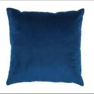 Blue velvet pillow cases (2)